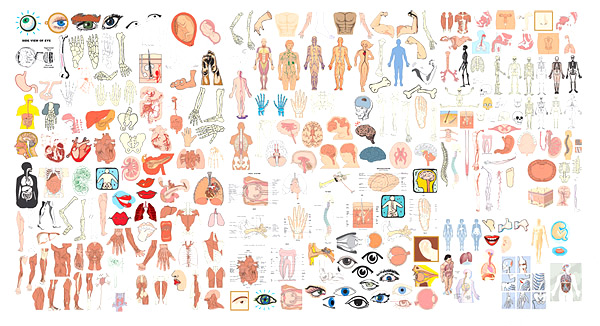 Elements of structure of the human body organs Vector
