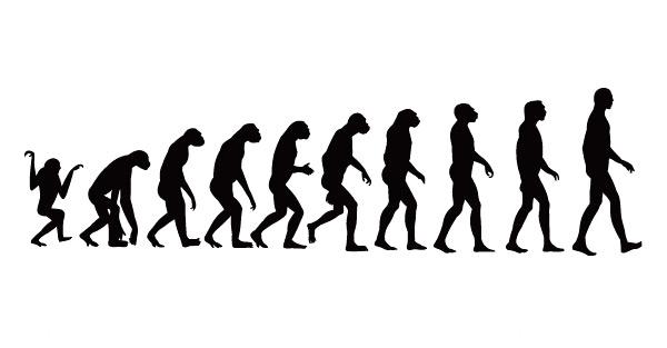 Elements of process of human evolution vector over millions elements of process of human evolution vector toneelgroepblik Images