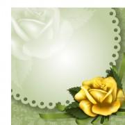Link toVector flower elements backgrounds 04