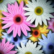 Link toVintage flowers illustration vector 02