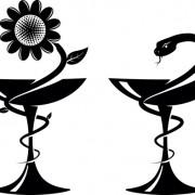 Link toVector snake symbol design elements 01