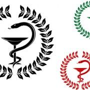 Link toVector snake symbol design elements 02