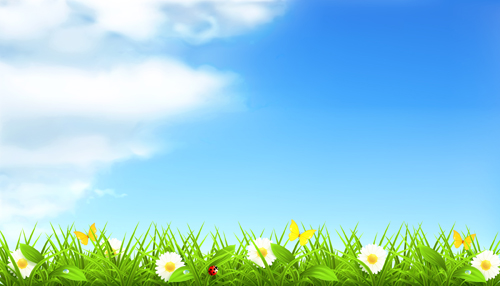 Summer With Flowers Backgrounds 01