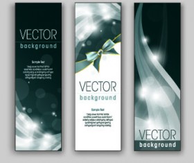 Shiny Vertical banner vector 05