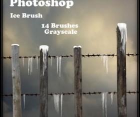 Ice Brush for Photoshop Brushes