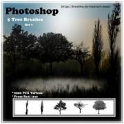 Link toTree brush set photoshop brushes