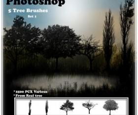 Tree Brush Set Photoshop Brushes