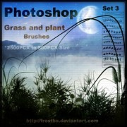 Link toGrass and plant photoshop brushes