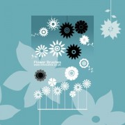 Link toSet of vector flower brushes photoshop brushes