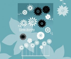 Set of vector Flower Brushes Photoshop Brushes