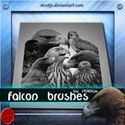 Link toFalcon brushes photoshop brushes