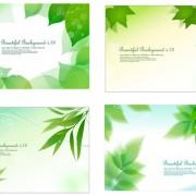 Link toFresh green background design elements