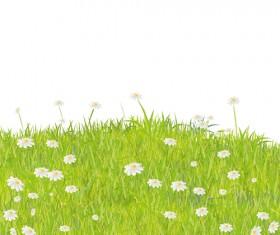 Summer Grass vector background 05