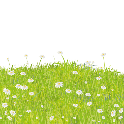 Summer Grass vector background 05