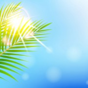 Link toShiny summer background vector 09
