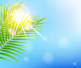 Shiny Summer background vector 09