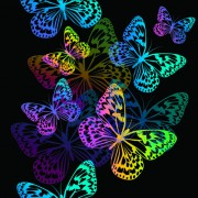 Link toColorful butterflies design vector 01