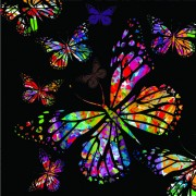 Link toColorful butterflies design vector 02
