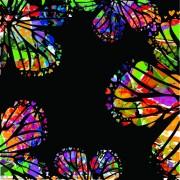 Link toColorful butterflies design vector 03