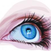 Link toDifferent eyes design vector 04
