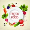 Fresh food labels design vector 01