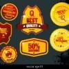 Vintage Label and badges design elements 04