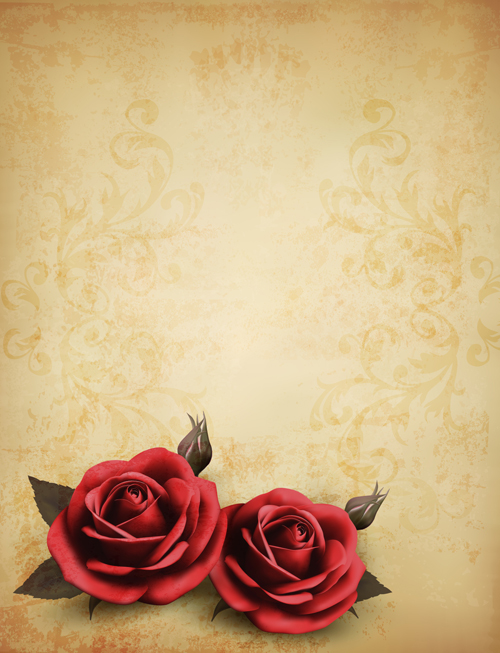 Vintage Pink And White Roses Vector Background  Vecteezy