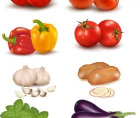 Vivid Vegetables design vector 01