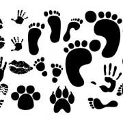 Link toHickey footprints handprint shoe vector