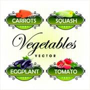 Link toFresh fruits and vegetables labels vector 03