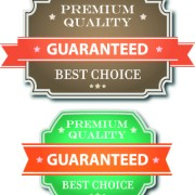 Link toGuaranteed 100% quality label vector 02