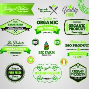 Link toOrganic food logos and labels vector 07