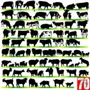 Link toSilhouettes of animals design vector 02