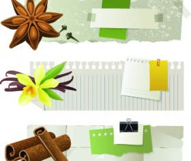 Special banners design elements vector 01
