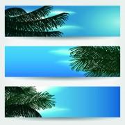 Link toSummer banners design vector 01
