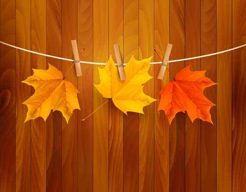 Beautiful Autumn leaves background vector 01
