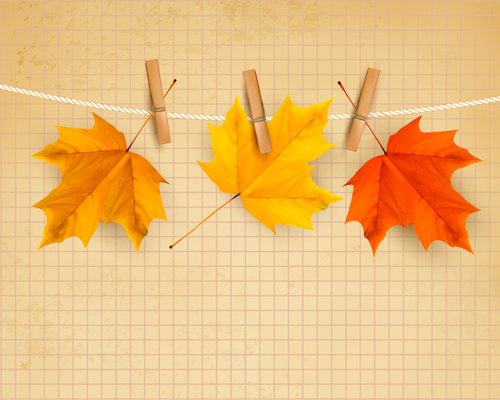 Beautiful autumn leaves background vector 02 over millions beautiful autumn leaves background vector 02 toneelgroepblik Gallery