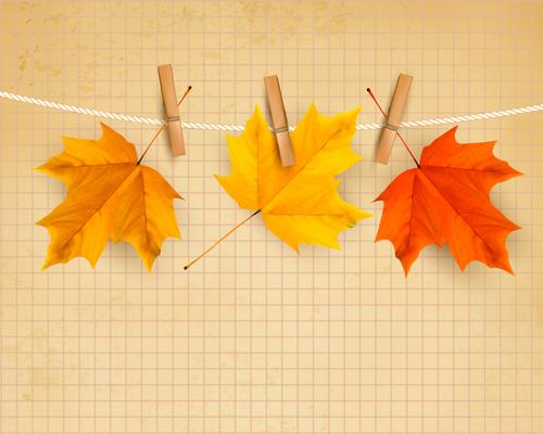 Beautiful autumn leaves background vector 02 over millions beautiful autumn leaves background vector 02 toneelgroepblik Choice Image