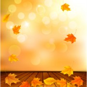 Link toBeautiful autumn leaves background vector 04