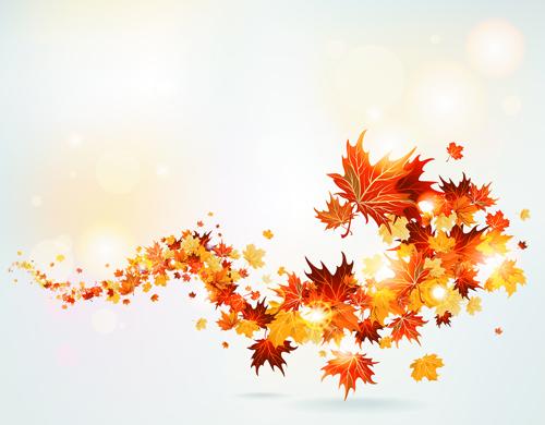 Bright autumn leaves vector Autumn Leaves
