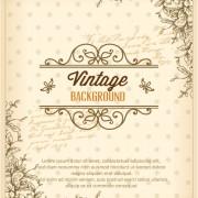 Link toElegant vintage background set 04