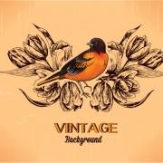 Link toElegant vintage background set 10