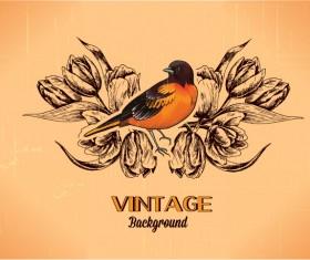 Elegant Vintage background set 10