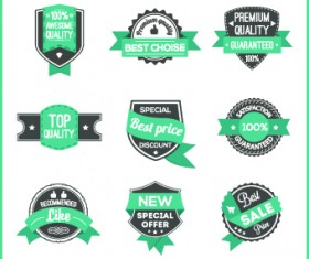 Best Label with ribbon vintage style vector 01