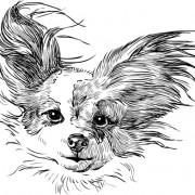 Link toSketch dog design vector 01