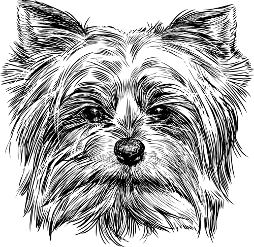 Sketch dog design vector 03