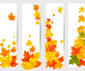 Maple Leaf banners vector set 01