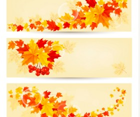 Maple Leaf banners vector set 02