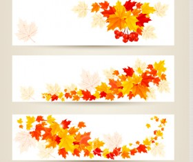 Maple Leaf banners vector set 05