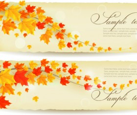 Maple Leaf banners vector set 06